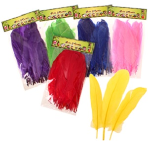 FEATHERS 50 PCE