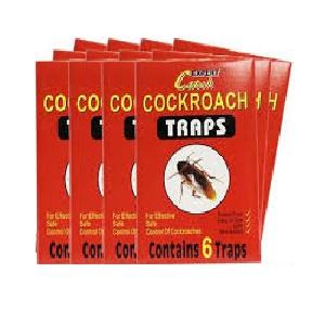 TRAP GLUE COCKROACH 6'S