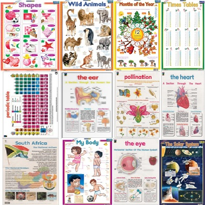 CHARTS EDUCATIONAL ASSORTED