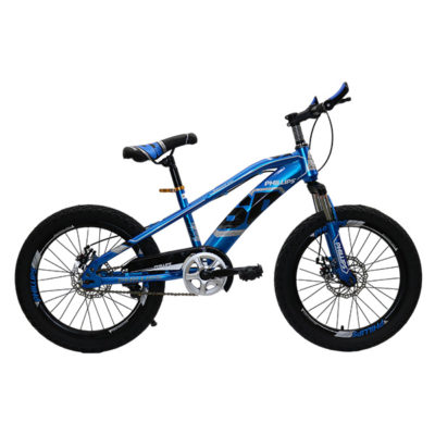 """BICYCLE MOUNTAIN BIKE PHILLIPS 20"""" BLUE"""